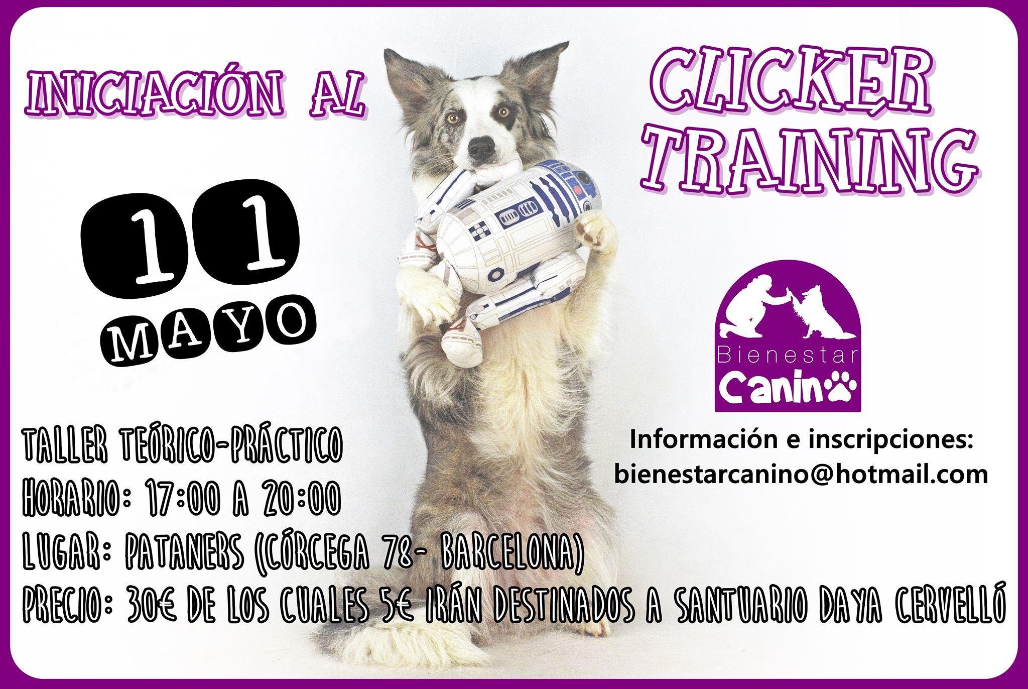 Iniciación al clicker training